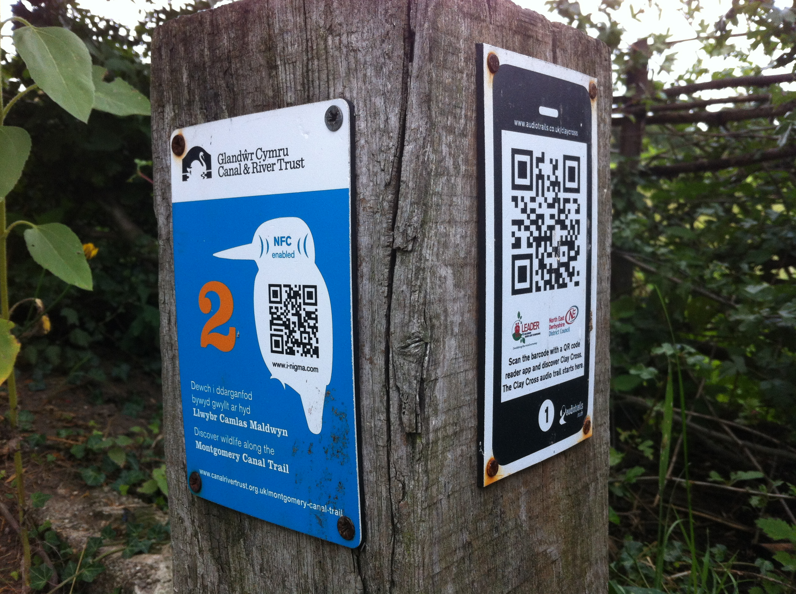 Evolution of the QR code