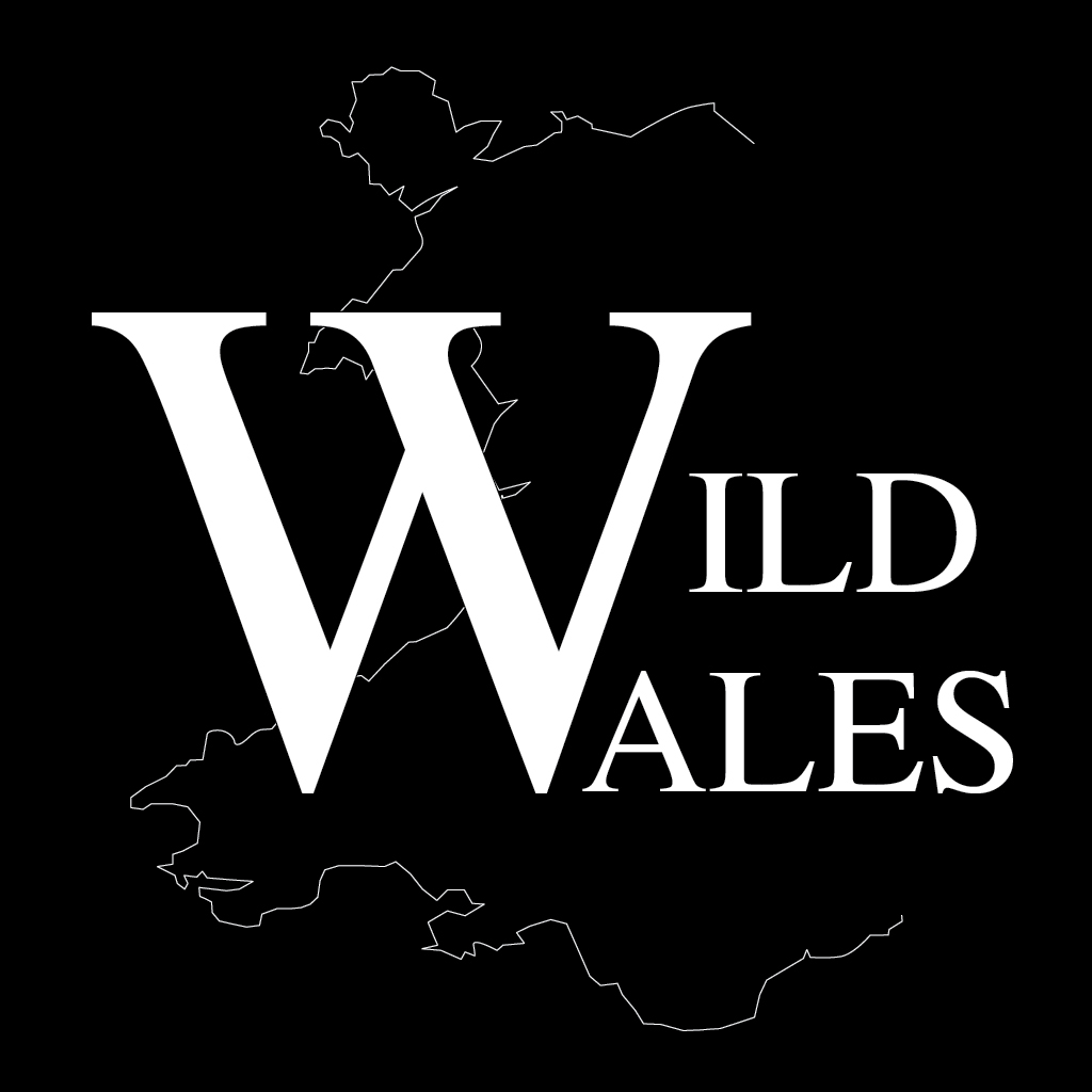 Wild Wales app