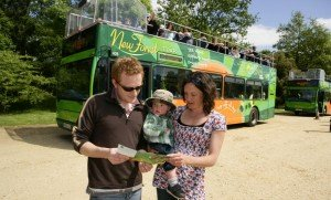 New Forest Tour