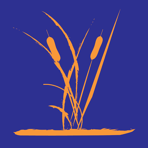 Great Fen app icon - orange rushes on blue background