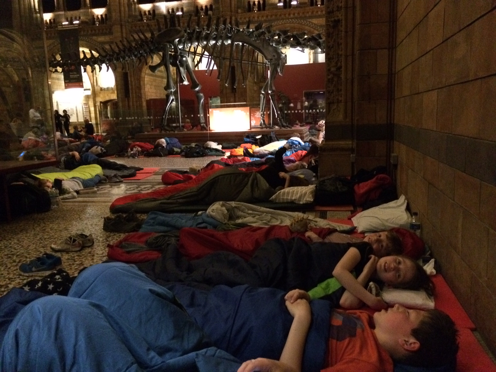 Dinosnores sleepover at NHM
