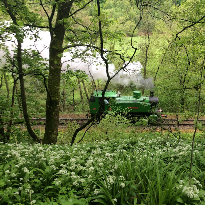 A weekend walk in Froghall in the Churnet Valley