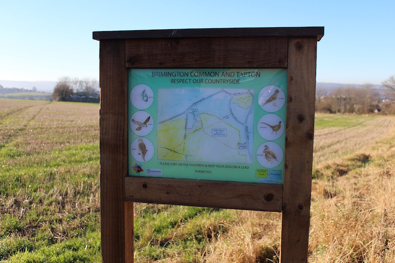 Softwood Interpretation Panels